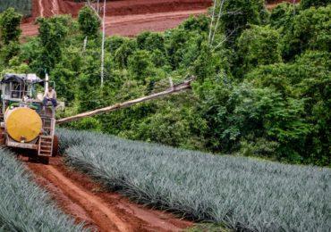 Premio a Costa Rica Campeones de la Tierra 2019  ¿Realmente lo merecemos?