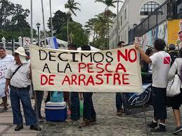 FECON. La pesca de arrastre no se debe legalizar en Costa Rica